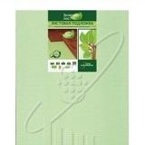 """Подложка листовая 3 мм Solid """"Зеленый лист"""" фото, цена"""